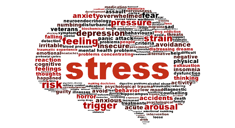 Stress Responses To Massage Therapy